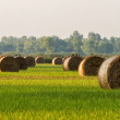 Bales — Stock Photo #23821313