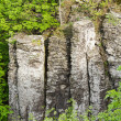 Stock Photo: Columnar basalt