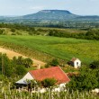 Landscape from Hungary  — Stock Photo