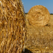 Straw bales — Stock Photo #31084875