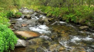 Beautiful river detail on the Pirineus (Spain) — Stock Video