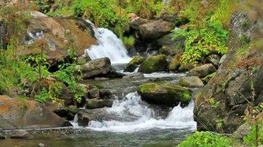 красивая река подробно на pirineus (испания — Стоковое видео