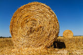 Straw bales in the light of sunset — Stok fotoğraf