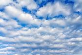 White cumulus clouds — Stock Photo