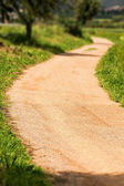 Nice walking road — Stock Photo