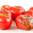 Mold on tomato — Stock Photo