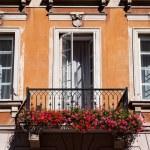 Opened window and Pelargonium — Stock Photo