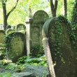 New Jewish Cementery, Kazimierz Krakow, Poland — Stock Photo