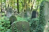 New Jewish Cementery, Kazimierz Krakow, Poland — Stock Photo