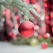 Red christmas ball hanging on branch — Stock Photo