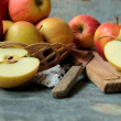 Fresh cutted apple fruits — Stock Photo #48535753