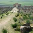 Stock Photo: Volubilis