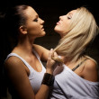 Brunette and blonde fighting - Stock Photo