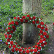 Funeral wreath near a tree — 图库照片