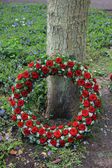 Funeral wreath near a tree — Stock Photo