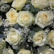 Stock Photo: White rose flower arrangement