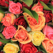 Stock Photo: Mixed rose bouquet