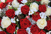 White and red roses in a bouquet — Стоковое фото