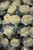 White rose flower arrangement — Stock Photo
