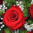 Stock Photo: Red roses and gypsophila