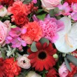 Mixed floral arrangement in red and pink - 图库照片
