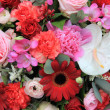Mixed floral arrangement in red and pink - Foto Stock