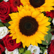 Sunflowers and roses — Stock Photo