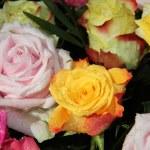 Multicolored rose bouquet — Stock Photo #12073017