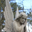 GuardiAngel grave monument — Stock Photo #12073342