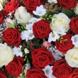 White and red roses in a bouquet — Stock fotografie