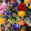 Stock Photo: Wildflower arrangement in bright colors