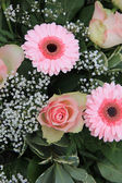 Pink roses and gerberas — Stock Photo