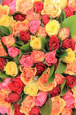 Mixed rose bouquet — Stock Photo
