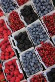 синие и красные ягоды — Стоковое фото