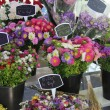 Colorful bouquets at a French market — Stock Photo