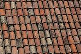 Tuiles de toit rouge — Photo