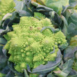 Green cauliflower — Stock Photo