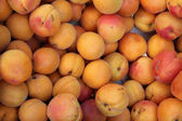 Apricots at a market — Stock Photo