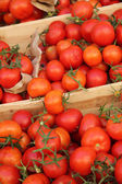Tomatoes at a French market — Stock Photo