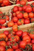 Fransız bir pazarda domates — Stok fotoğraf