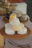 Cheese at a French market — Stockfoto