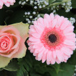 Pink roses and gerberas - Stock Photo