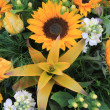 Sunflower arrangement — Stock Photo