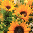 Sunflower arrangement — Foto Stock