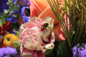 Bee in a mixed bouquet — Stock Photo