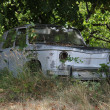 Forgotten old car — Stock fotografie