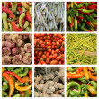 Vegetable collage XL — Stock Photo