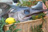 Kılıçbalığı fransız market — Stok fotoğraf