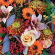 Autumn bouquet — Stock Photo #14728989