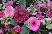 Mieszany układ różowy — Zdjęcie stockowe
